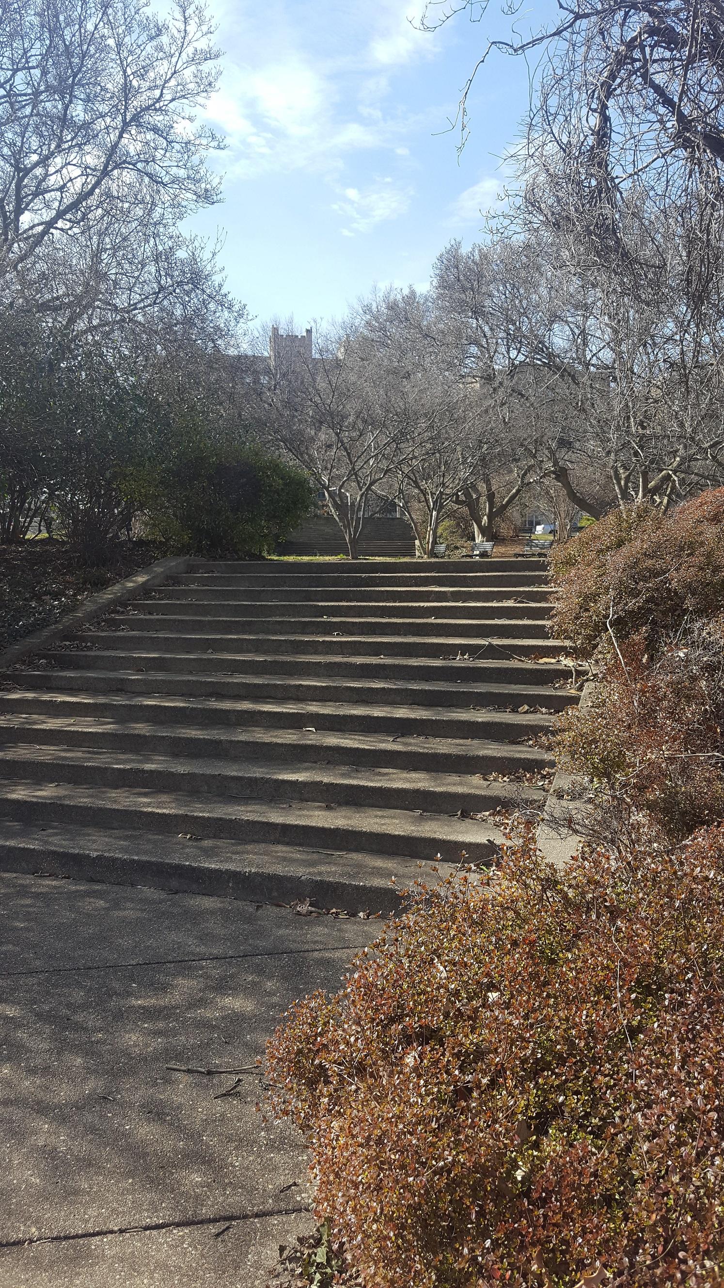 BrycePark-stairs